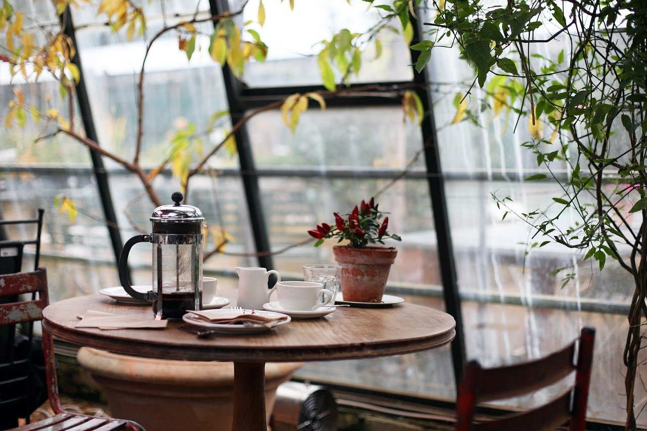 conservatory, coffee, plants